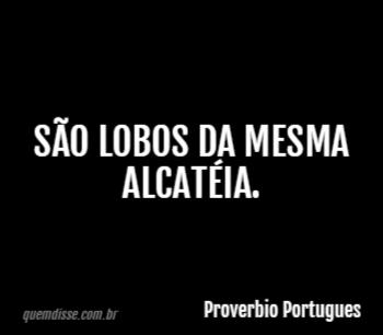 Proverbio Portugues São Lobos Da Mesma Alcatéia