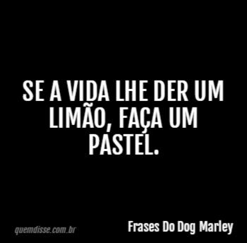 Frases Do Dog Marley Se A Vida Lhe Der Um Limão Faça Um Pastel