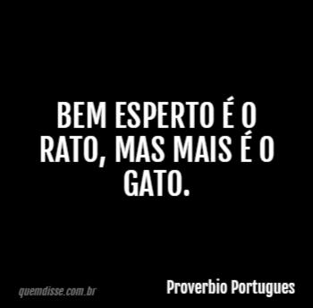 Proverbio Portugues Bem Esperto é O Rato Mas Mais é O Gato