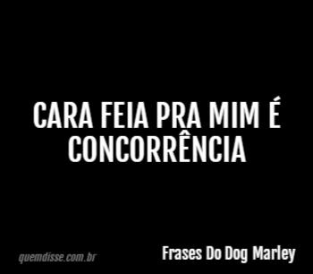 Frases Do Dog Marley Cara Feia Pra Mim é Concorrência